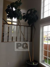 painted room with high ceilings in home in Ottawa by PG PAINT & DESIGN painters