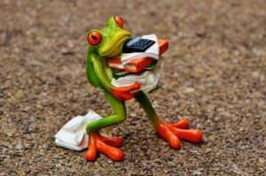 frog caricature carrying calculator to estimate how much paint to buy for house painting project