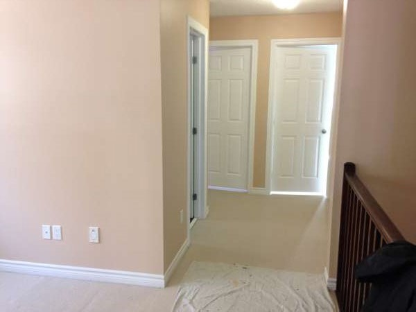 Neutral Pink Color wall painted by Ottawa's Leading Painting Company