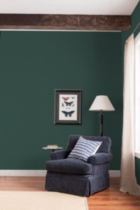 dark green paint colour on walls of living room