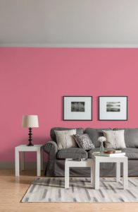 bright pink paint colour on walls of living room