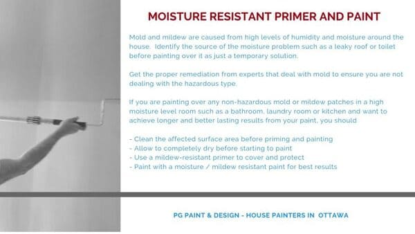 painting over mold with mold and mildew resistant primer paint