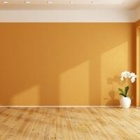 Paint Colour Consultation